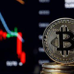 El precio de Bitcoin actualizado [2020]